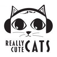 Really Cute Cats